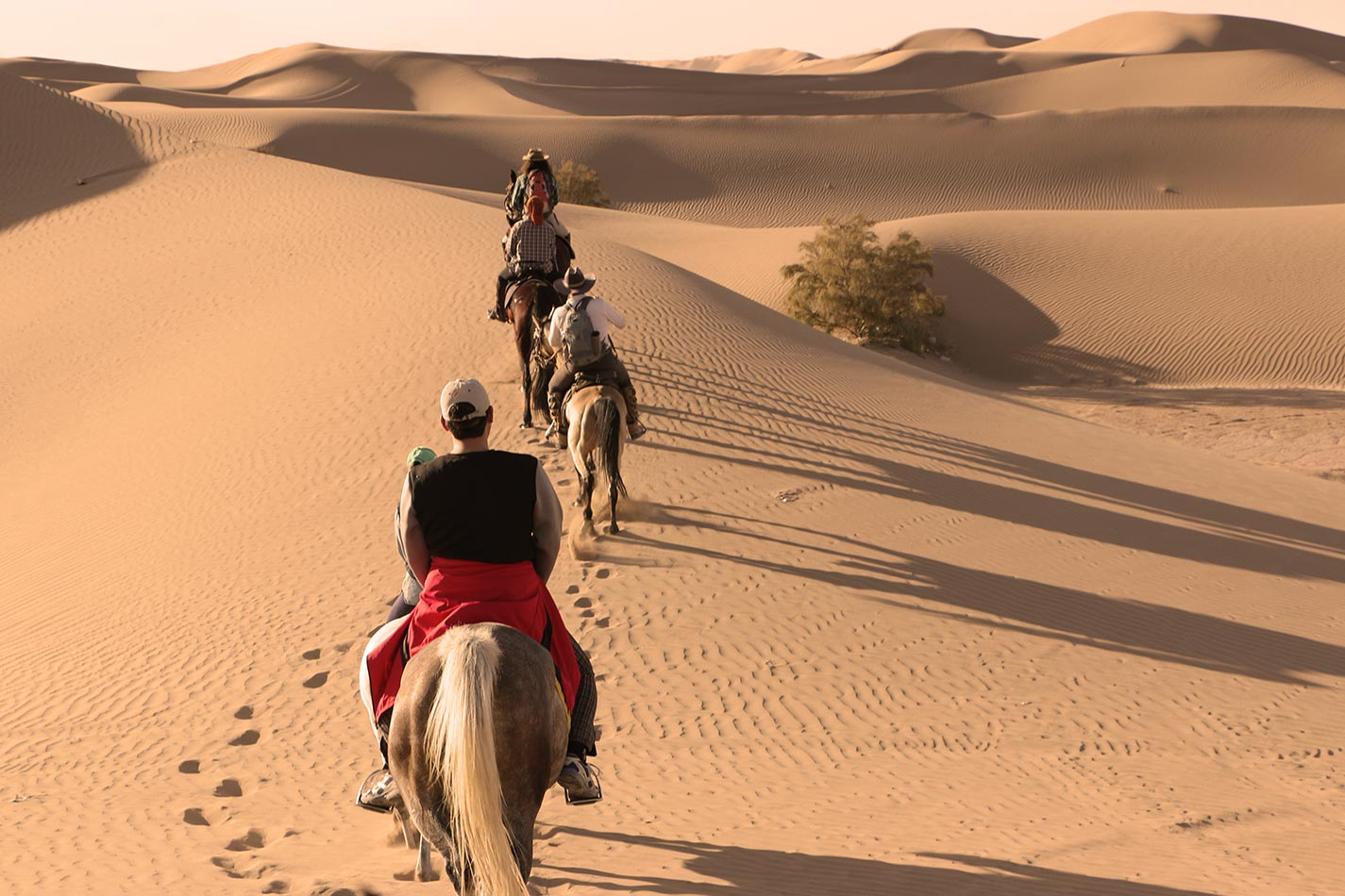 Horse Ride with Camping in Bedouin Tents While Enjoying ...